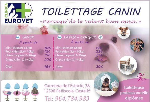Clinica Eurovet - Toilettage canin